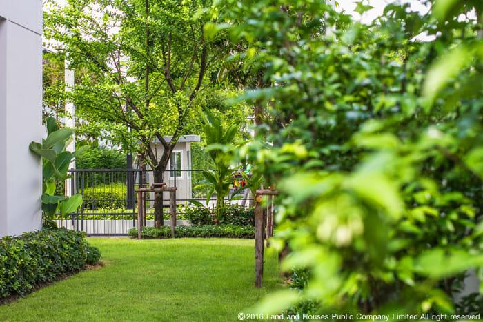 จัดสวนในบ้านด้วยแนวคิดต้นไม้ 3 ระดับ